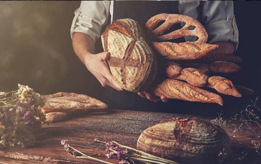 527x332-A-true-breadwinner